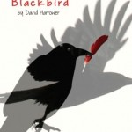 """Blackbird"" by David Harrower at Riverside Theatre"