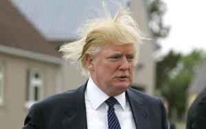Donald_Trump_1106836a