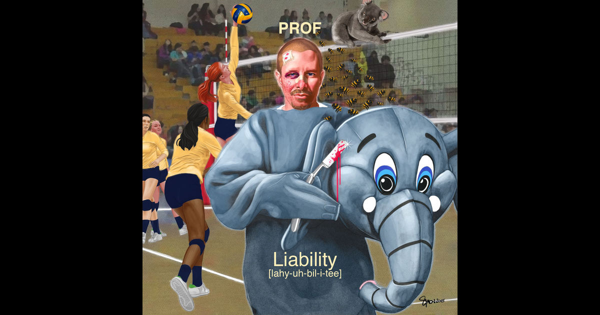 """Cover for """"Liability"""""""