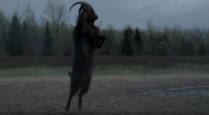 "The ever-spooky demonic goat known as ""Black Philip"" (photo via: BloodBathandBeyond.tv)"
