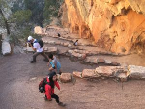 switchbacks at Zion (image via Wenbo Zhang)