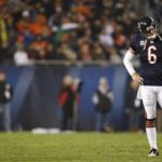 Checking in with the Bears