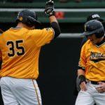Baseball Mid-Season Report